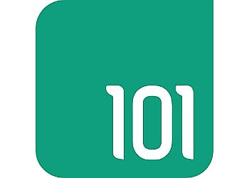 101 IT Limited