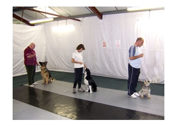 ABC Dog Training