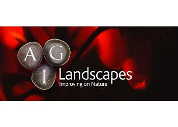 AGI Landscapes