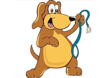 Aj Dog Care