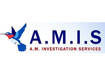 A.M. Investigation Services
