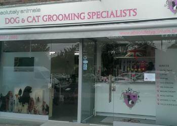 Absolutely Animals Ltd.