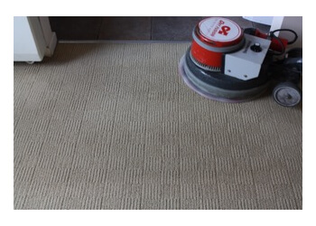 Absorb Carpet Cleaning