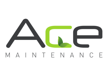 Ace Maintenance