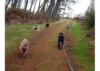 Alpha Dog Walks
