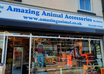Amazing Animal Accessories