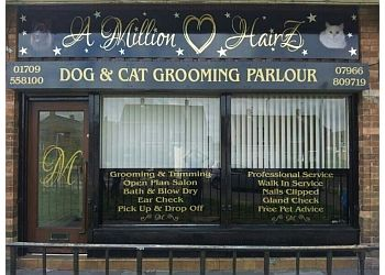 A millionhairz dog and cat grooming parlour
