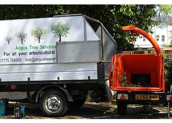 Angus Tree Services