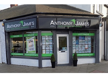 Anthony James Property Ltd