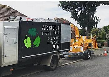 Arbor Cura Tree Surgery