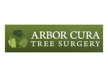 Arbor Cura Tree Surgery Ltd.