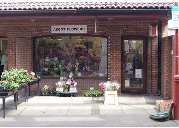 Ascot Flowers