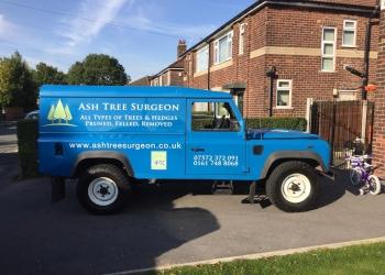 Ash Tree Surgeon