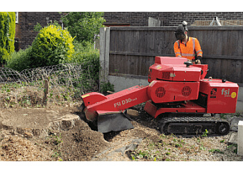 Ashley Tree Services
