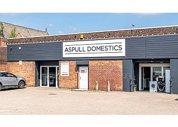 Aspull Domestics