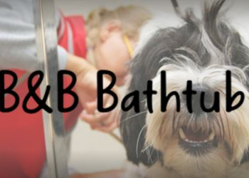 B & B Bathtub