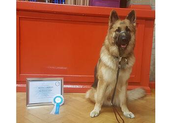 Back To Basics Dog Training