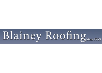 Bainey Roofing
