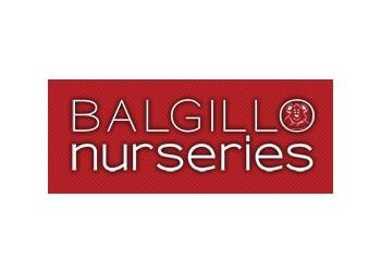 Balgillo Nursery