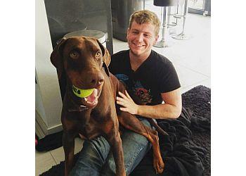 Bark Play Teach Dog Training and Walking