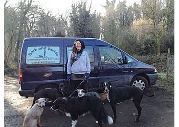 Bark and Stride Cambridge Pet Services