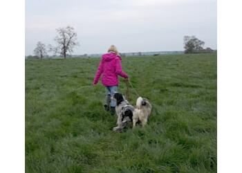 Beckys Woofy Walks