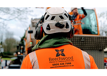 Beechwood Trees & Landscapes LTD