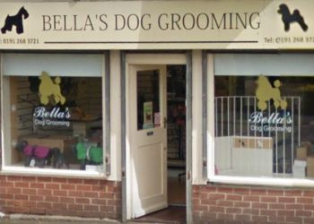Bella's Dog Grooming