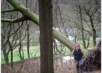 Bells Tree Surgery Ltd.