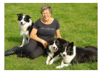 Berkshire Dog Trainers
