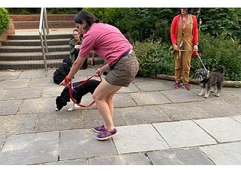 Bertie Dog Training