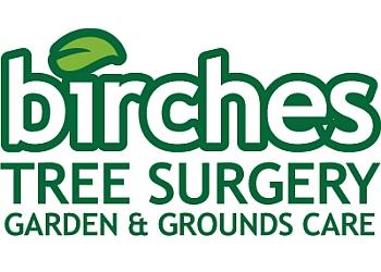 Birches Tree Surgery