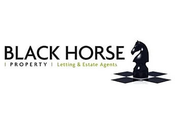 Black Horse Property