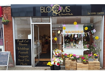 Blooms by Daniel Clarke Ltd.