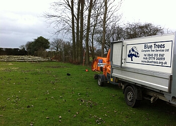 Blue Trees Complete Tree Services Ltd.