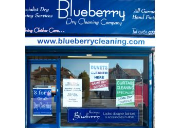 Blueberry cleaning Company