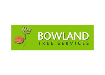 Bowland Tree Services