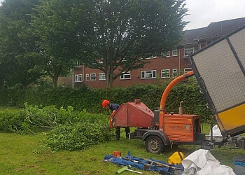 Brewood Tree services