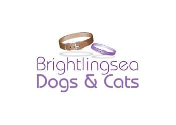 Brightlingsea Dog walking