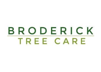 Broderick Tree Care