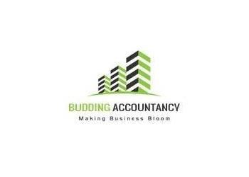 Budding Accountancy
