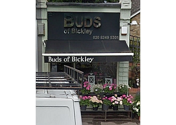 Buds of Bickley