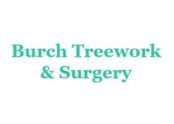 Burch Treework & Surgery