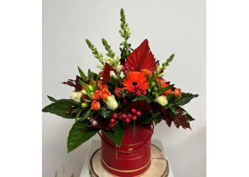 Butterflies Florist