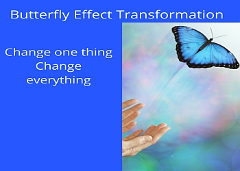 Butterfly Effect Transformation