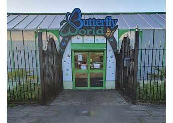 Butterfly World Ltd.