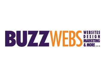 Buzz Website Design