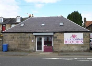 Caledonian Blooms