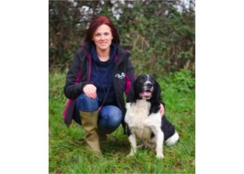 Canine Education