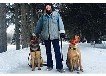 Canine Interpreter